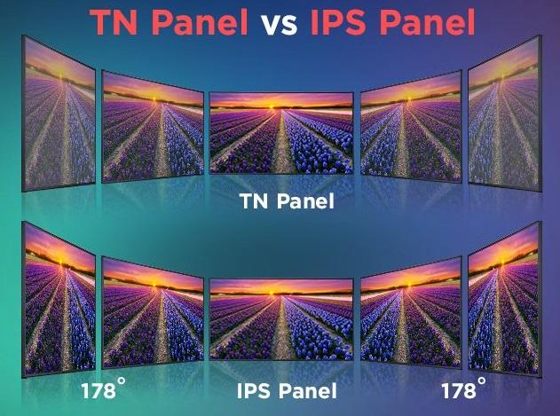 TN و IPS